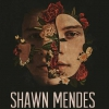 affiche SHAWN MENDES - THE TOUR