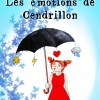 affiche LES EMOTIONS DE CENDRILLON